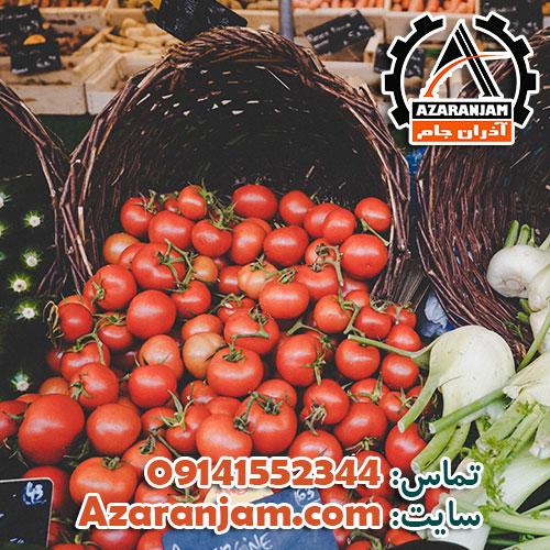 سود پرورش گلخانه ای گوجه فرنگی